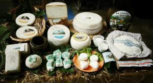 [:it]Banco Formaggi[:en]Cheese Banquet[:] @ Area Verde