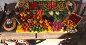 [:it]Mercatino Frutta e Verdura[:en]Fruits & Vegetables Market[:] @ Area Verde